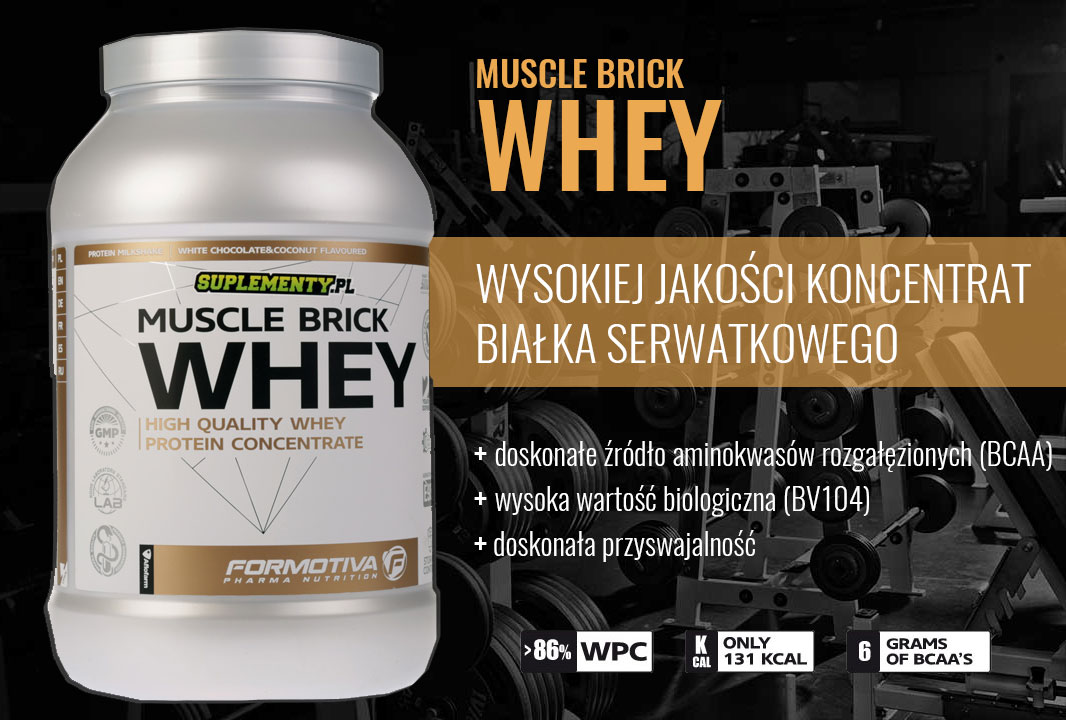 muscle brick whey banner